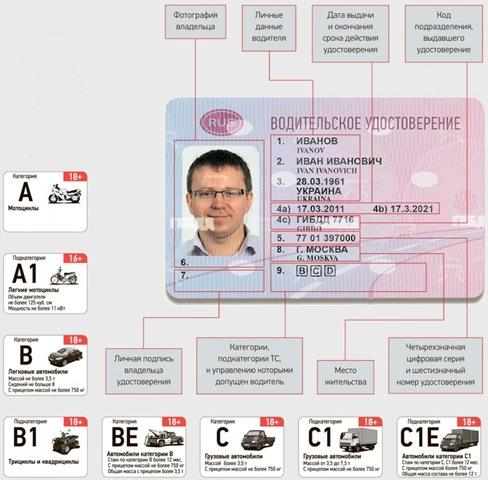 Водительское удостоверение узнать дату выдачи по номеру